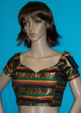 Multicolor Readymade Designer Blouse / Choli (M / L)