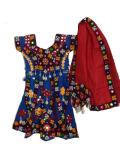 Colorful Indian Dress, Kids Garba Chaniya Choli W/ Shell Work